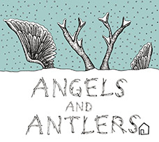 Angels And Antlers